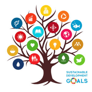 Sustainable Development Global Goals.