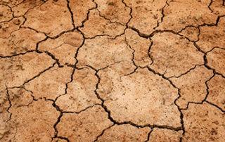Very dry soil.